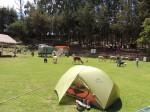 Camping in Cusco