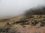 Der Nebel kommt näher