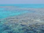 Ein winziger Teil des Great Barrier Reefs